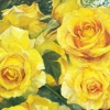 """""""Жълти рози"""", 134х60, масло, платно"""